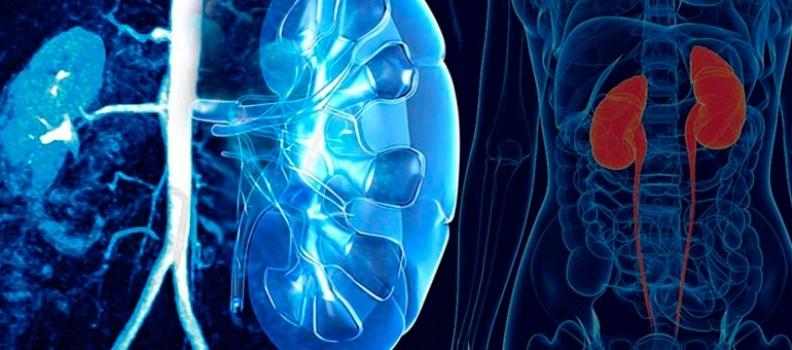 Enfermedades urológicas, conoce algunos síntomas que podrían hacer la diferencia para tu salud